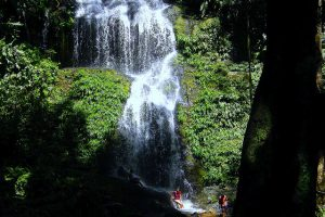 5911550529-suriname-irene-waterfall