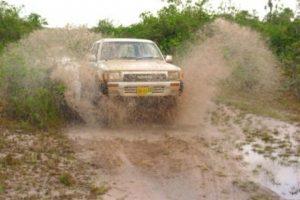 jeepsafari1 (1)